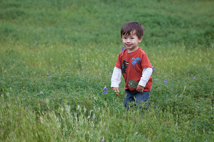 Zane plays in the weeds